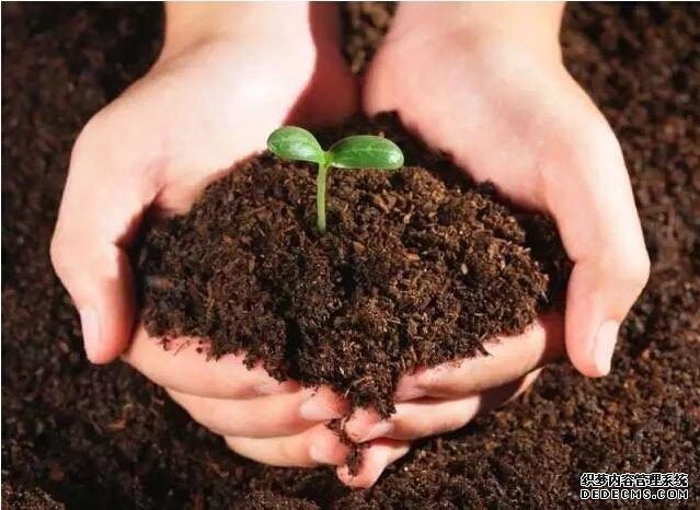 土壤及固废beplay软件